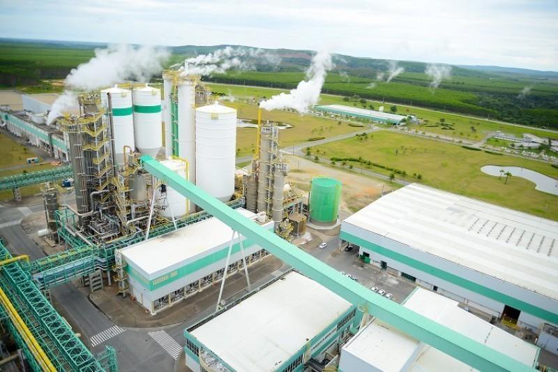 Com uma produção anual média de 1,1 milhão de toneladas, a empresa gera 2.904 empregos próprios e de terceiros. (Foto: Divulgação)